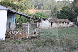 Farmyard in Linia Craveiro